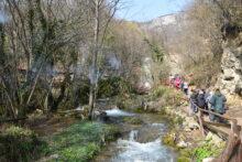 Lisine-vodopad Veliki Buk
