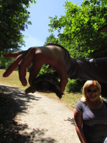 Kornjačica