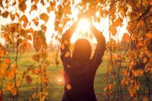 U susret suncu