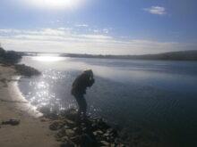 Moj prelepi Dunav