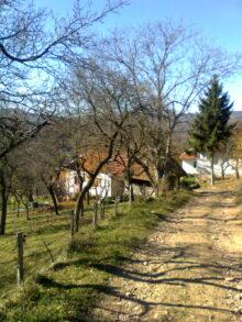 Lepota sela Žunjeviće (Novi Pazar)